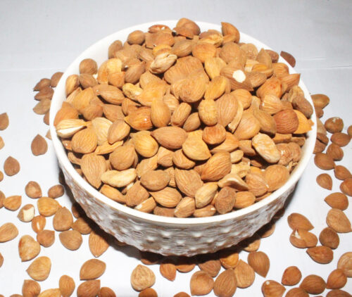 apricot-kernel-northern areas